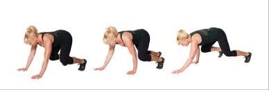 bear crawl exercise