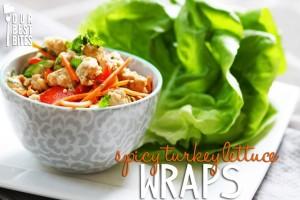 turkey-lettuce-wraps-preview1