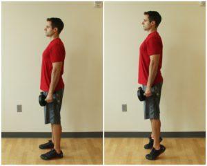 heel raise exercise dumbbell