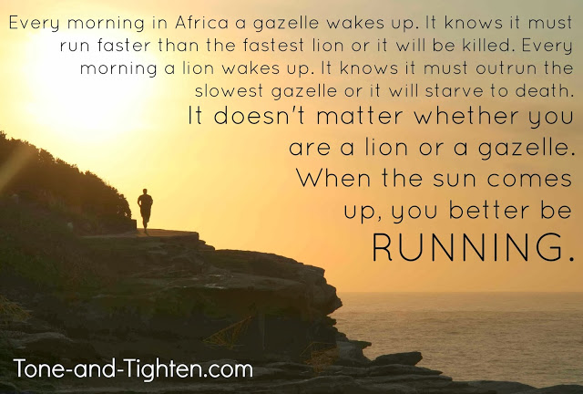 Fitness Motivation Every Morning In Africa A Gazelle Wakes Up
