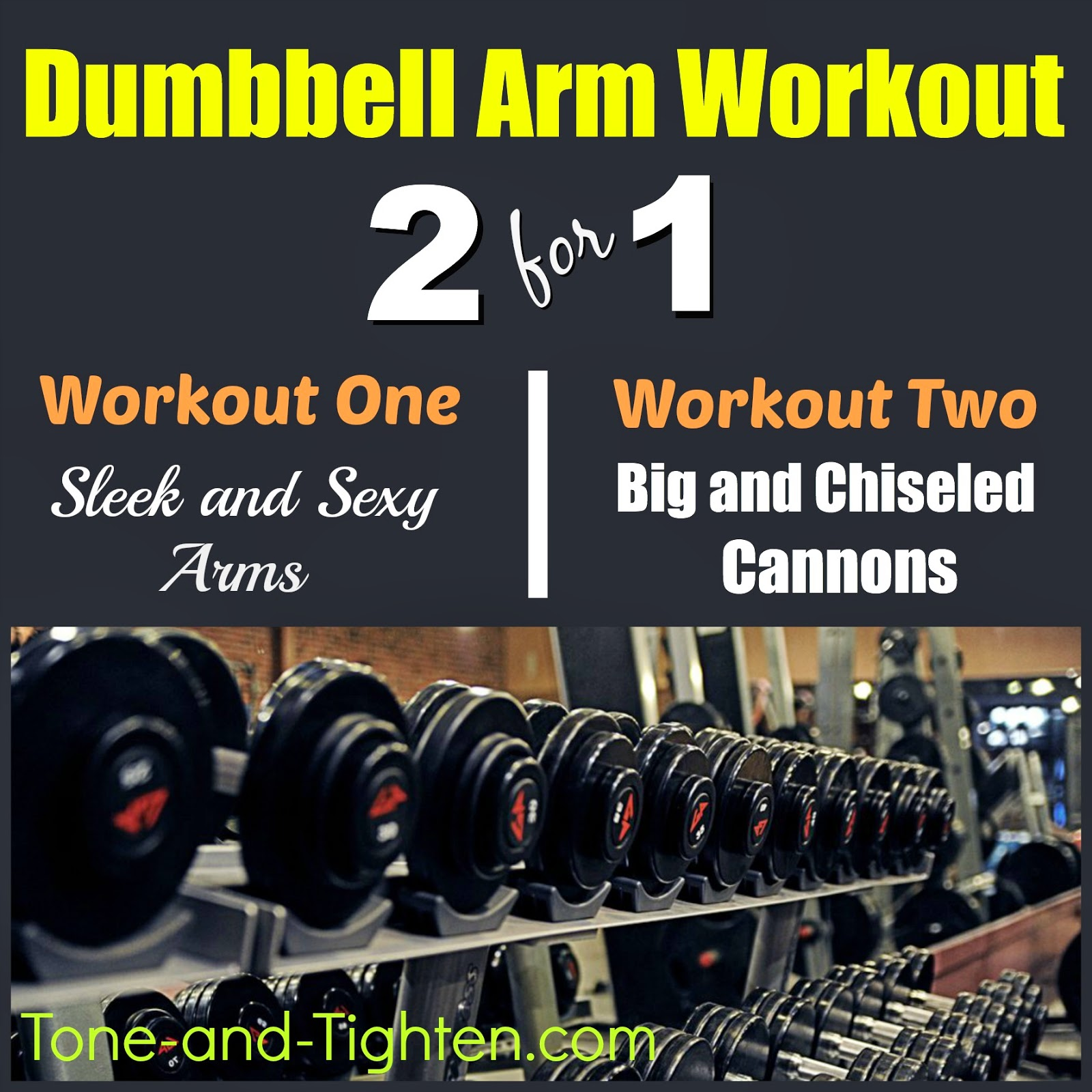 http://tone-and-tighten.com/2014/01/dumbbell-free-weight-arm-workout.html