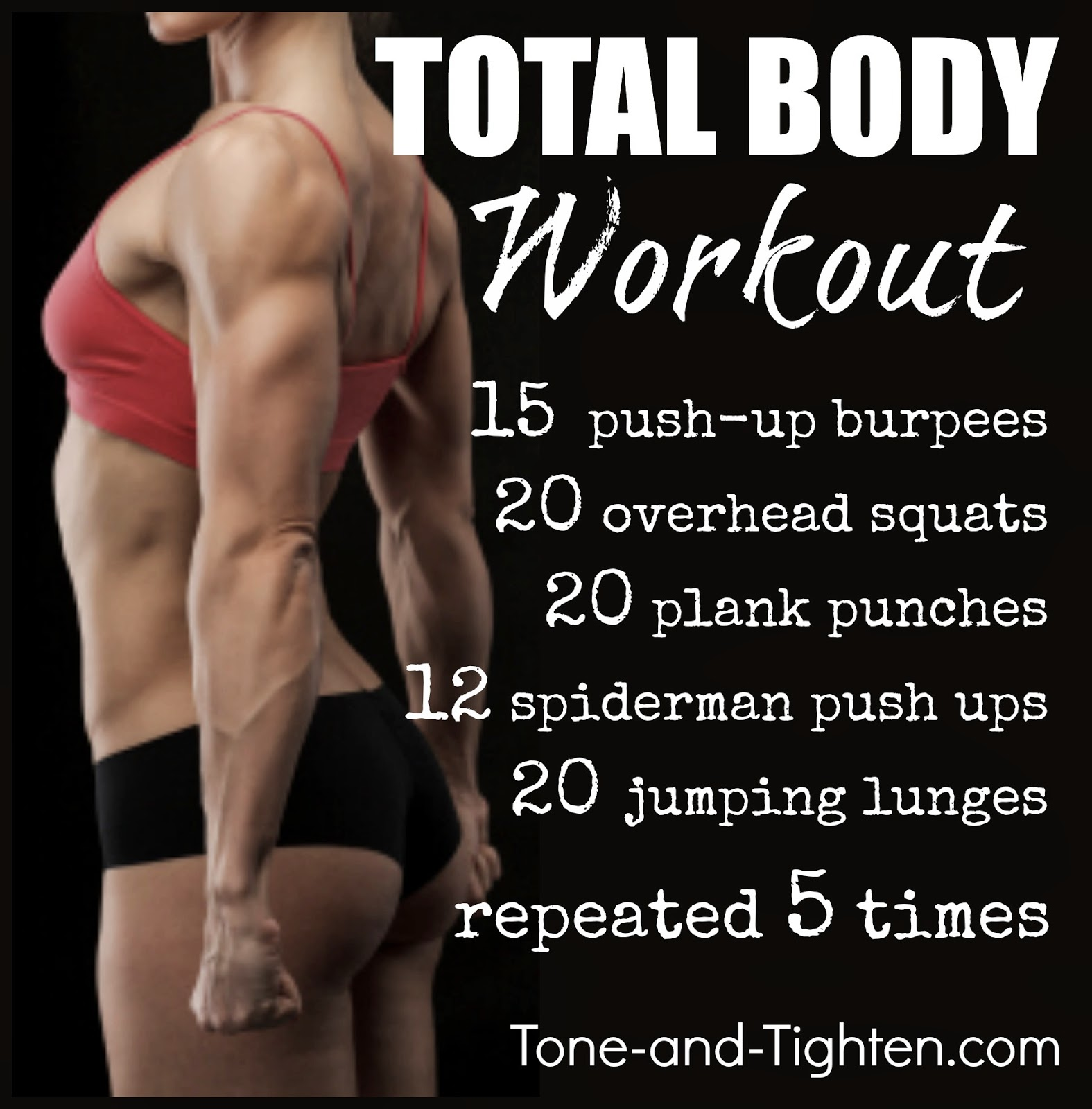 http://tone-and-tighten.com/2013/12/12-days-of-fitness-at-home-total-body-workout.html