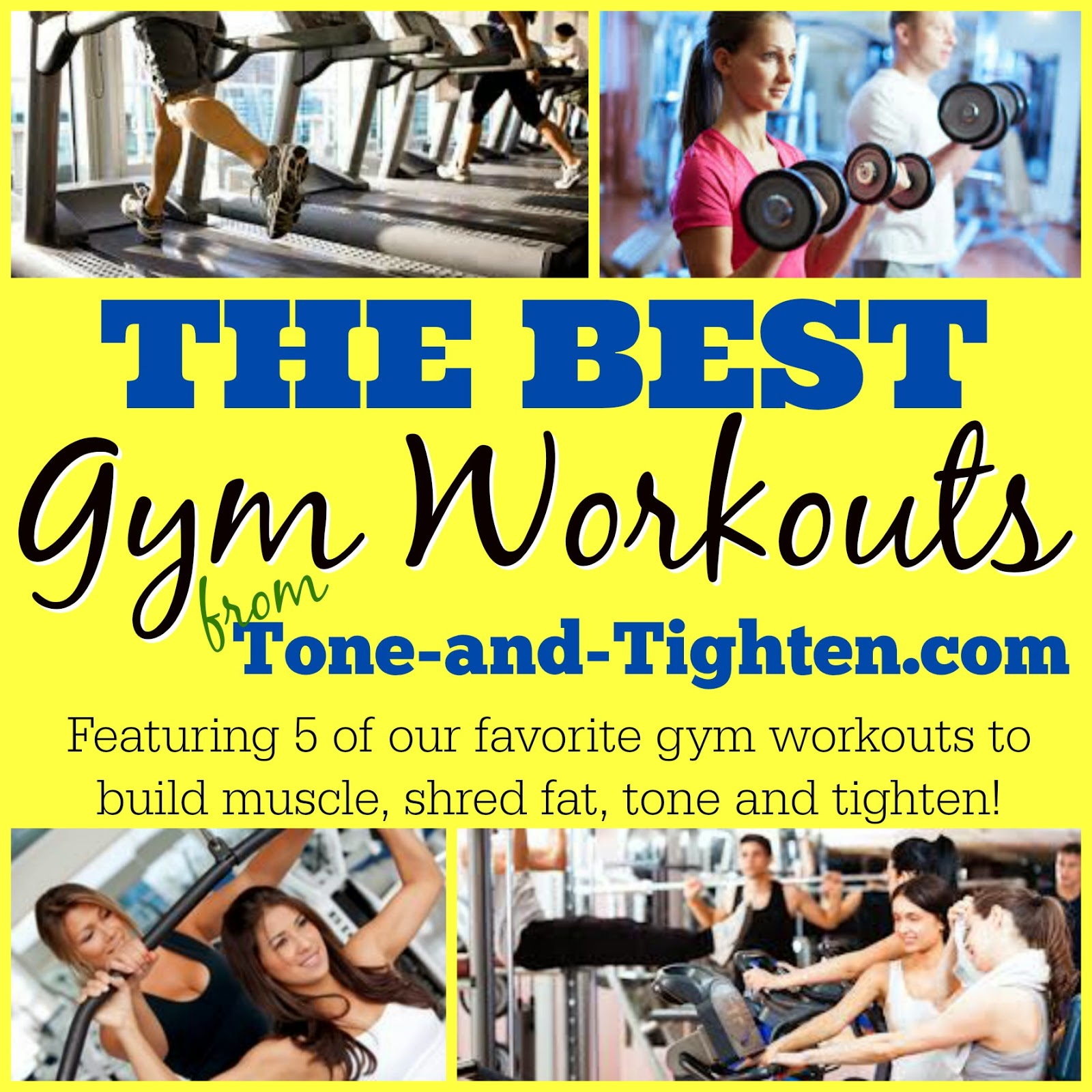 Weekly Workout Plan – 5 of the best gym workouts all in ...