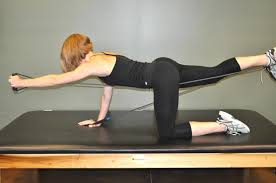 resistance band bird doge