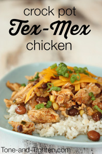 Crock Pot Tex Mex Chicken Recipe