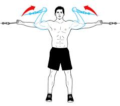 2 likewise Cable Machine Upper Body Workout Best Crossover Machine Exercises For Your Arms Chest And Shoulders together with Anime wolf fullbody further Biceps And Triceps Workout Routine as well 7 Must Exercises Get Wide Back. on cable core exercise
