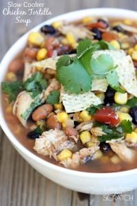 Chicken_Tortilla_Soup1