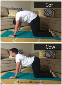 CatCow Yoga Pose