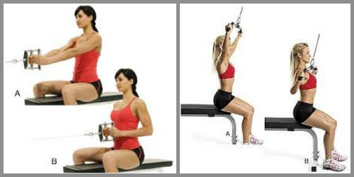 seated row or lat pulldown