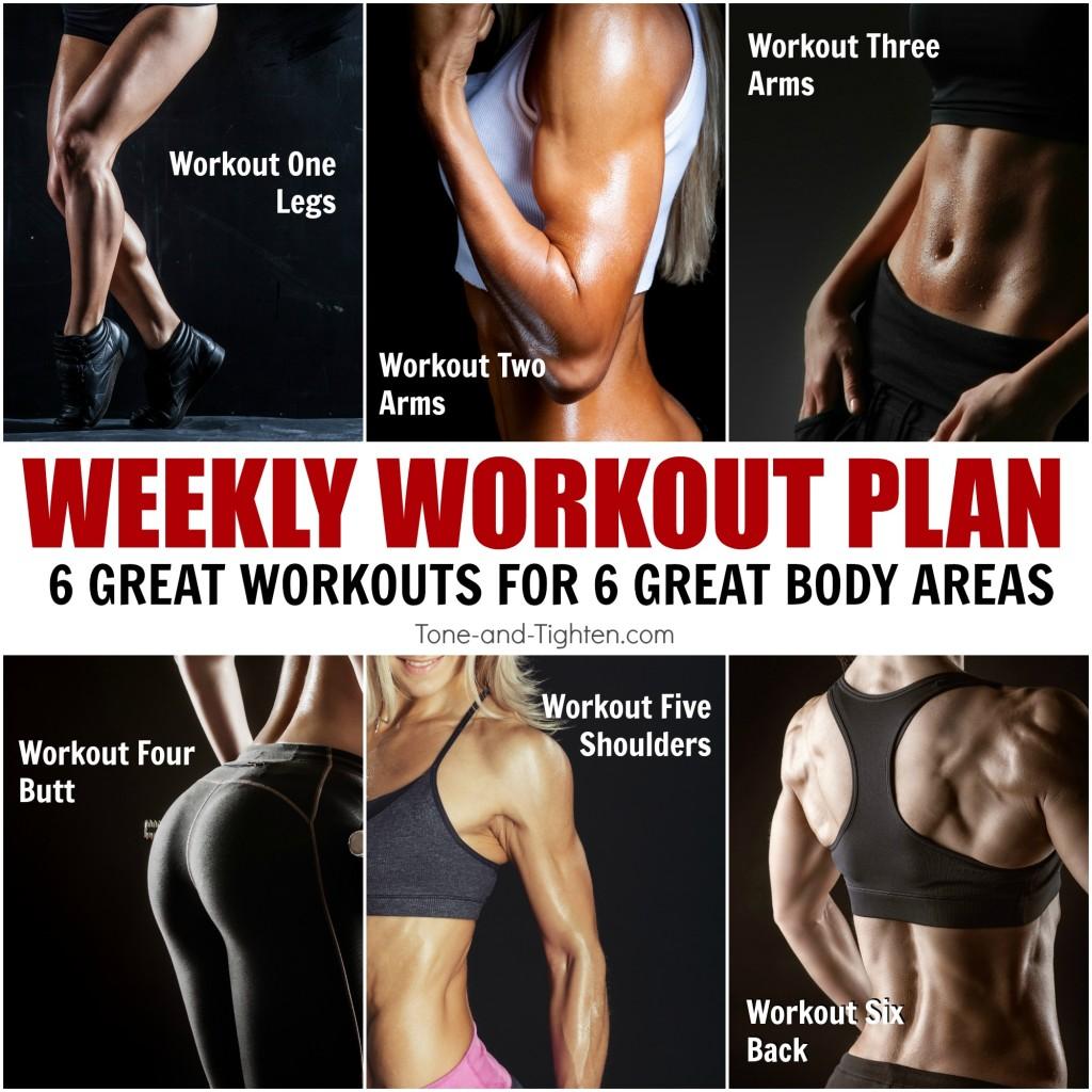 free weekly workout plan total body
