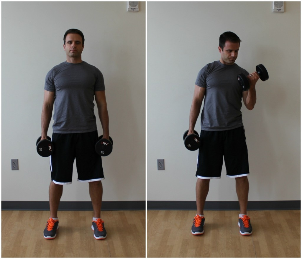 biceps curl dumbbell