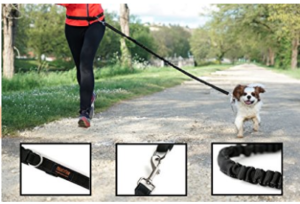 hands-free-dog-leash-for-runners